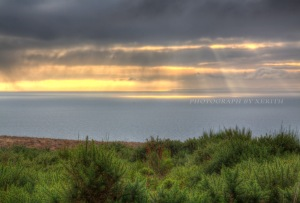 IMG_0093_4_5_tonemapped_shrunk